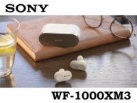 WF-1000XM3_sony