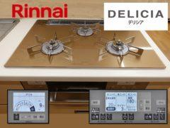 Rinnai_RHS71W31E12RCSTW