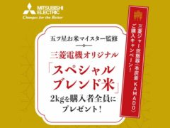 mitsubishi_Purchase campaign