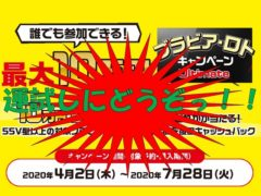 Bravia Lotto CampaignBravia Lotto Campaign Ultimate20200402-20200728