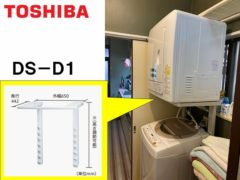 toshiba_DS-D1(1)