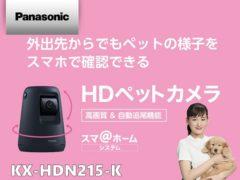 panasonic_KX-HDN215-K