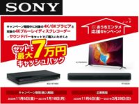 Sony Home Entertainment Support Campaign 2020